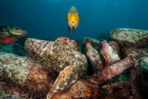 Shipwrecks (Conservation)